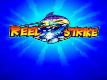 Reel Strike